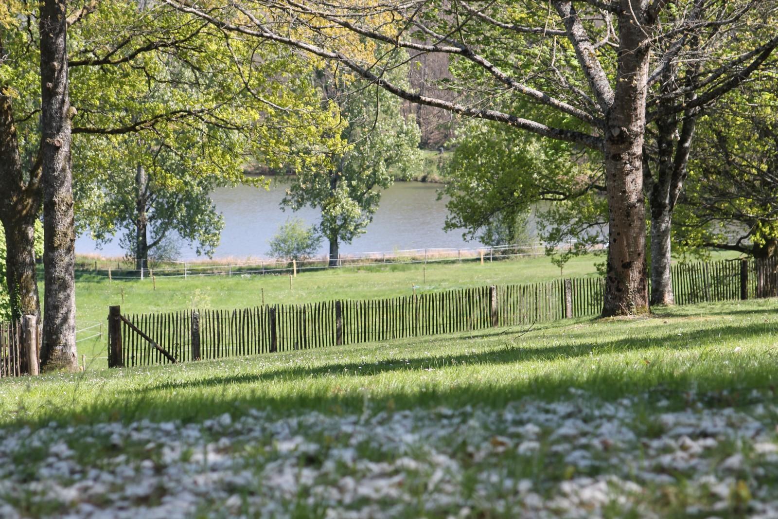 Les emplacements confort au Camping l'Air du Lac