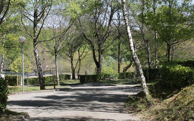 camping-allée-verdure-nature